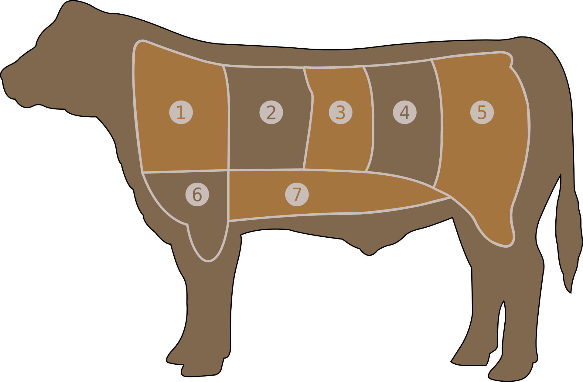 meat-chart-29043